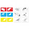 Szablony - ptaki