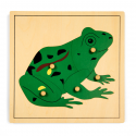 Puzzle ze zwierzętami - żaba