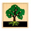 Puzzle botaniczne - drzewo