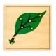 Puzzle botaniczne - liść