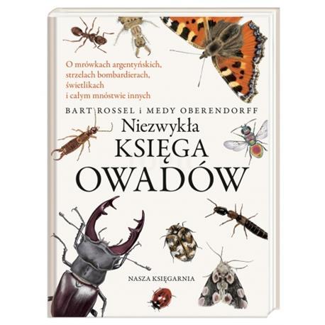 Niezwykła księga owadów-8010